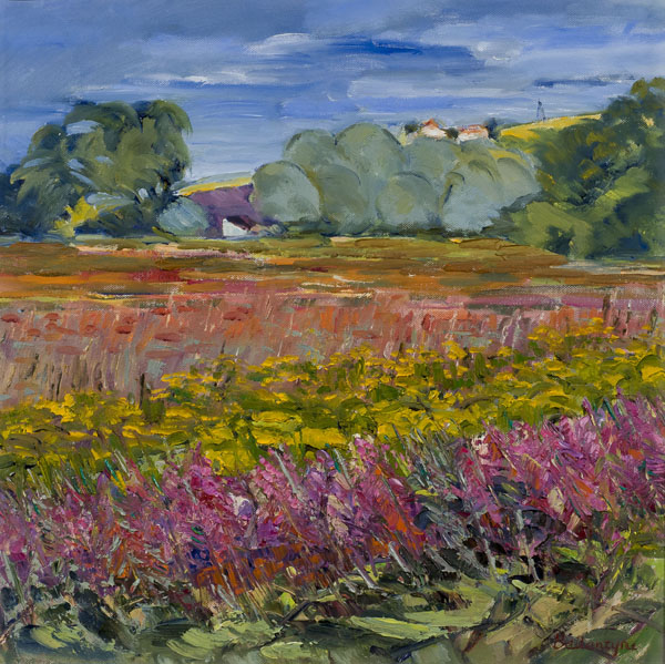 Summer Fields, Ayrshire