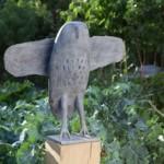 Flat Owl
