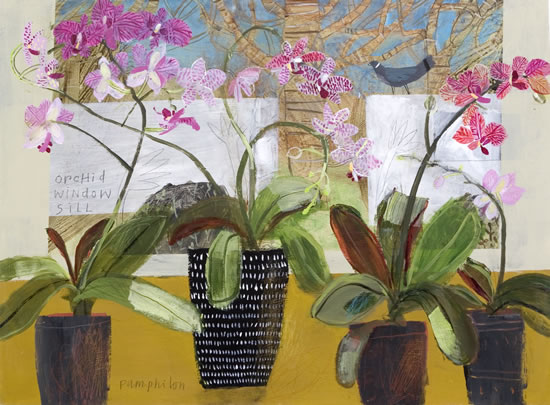 orchid window sill